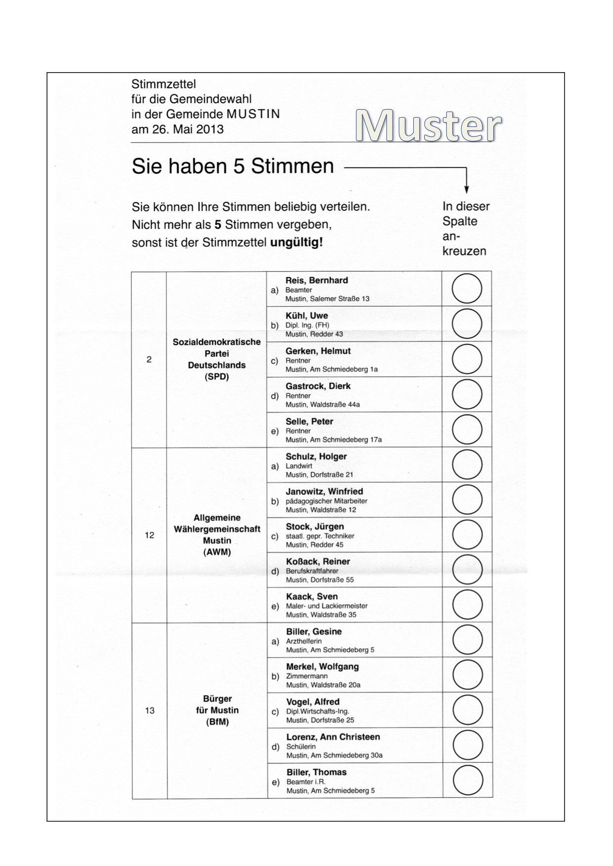 Stimmzettel 2013 Mustin - Muster
